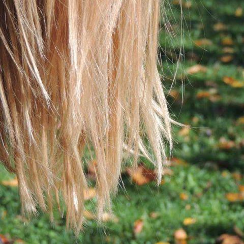 Welche Haarseife passt zu mir?